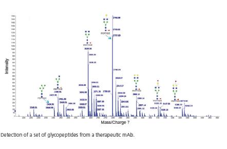 glycopeptides