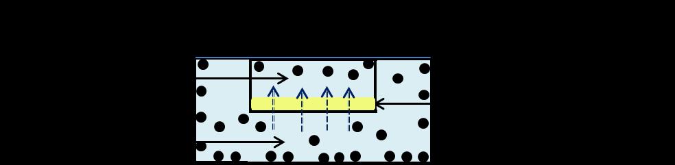 parallel artificial membrane permeability assay